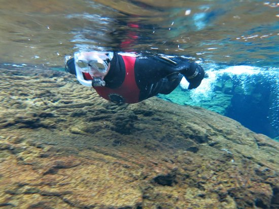 Dive.Is - Day Tours : Me snorkling