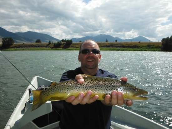 Grey Cliffs Ranch: Brown Trout on the Yellowstone