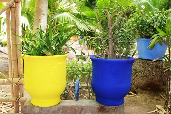 Colores del jardin photo de jardin majorelle marrakech for Jardin 7 colores