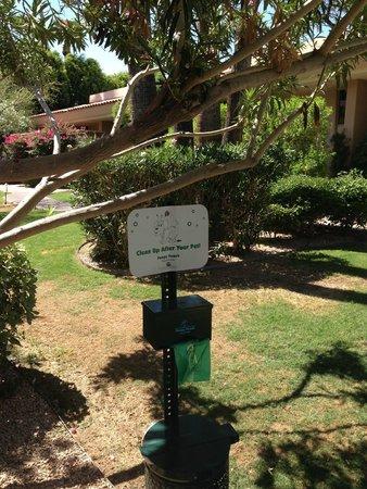 FireSky Resort & Spa: Dog Walking Area & complimentary poop bags!