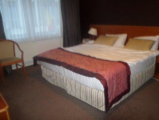 Hotel Agenda Louise : chambre