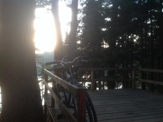 Mount Desert Campground: the view over our deck