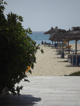 Club Eldorador Salammbo : Plage vue de la piscine