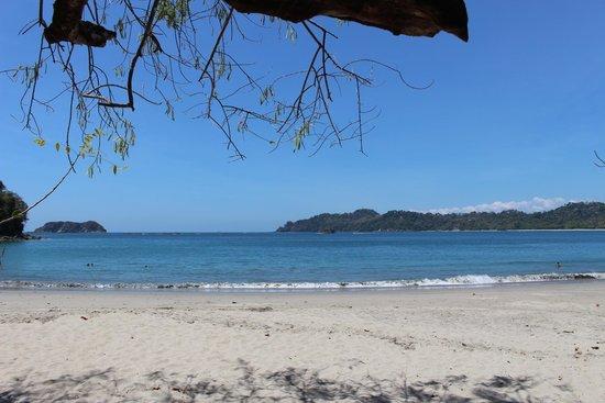 Playa Manuel Antonio: Manuel Antonio National Park
