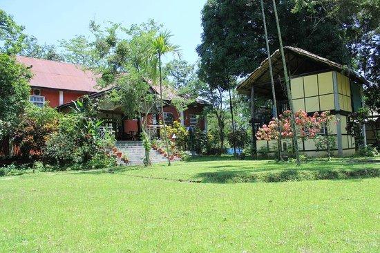 Wild Grass Lodge: Machan