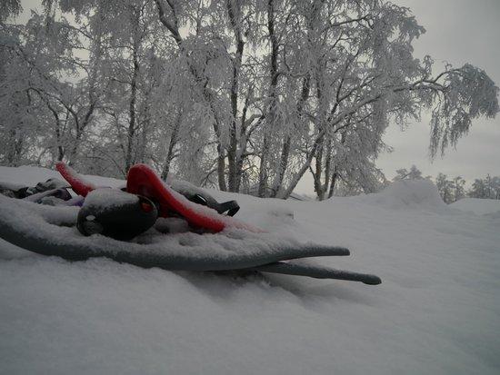 Davvi Arctic Lodge: Snow shoes