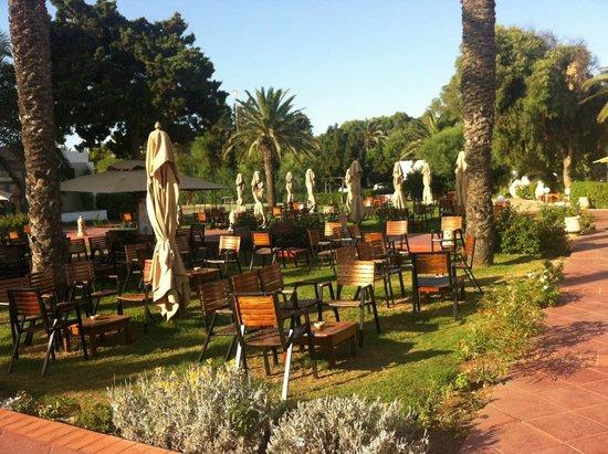 Club Eldorador Salammbo: Bar ... terrasse !