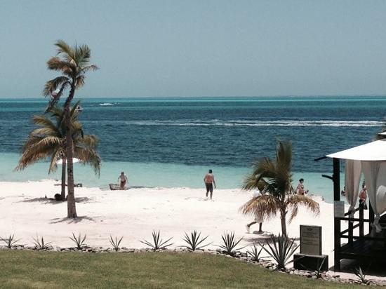 Hotel Riu Palace Peninsula: View from the Buffet Restaurant