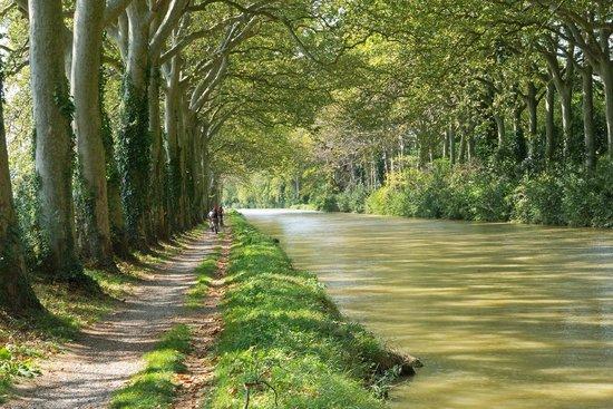 Domaine de Cure: Canal Du Midi