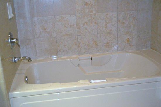 Horseshoe Tunica: Large Tub