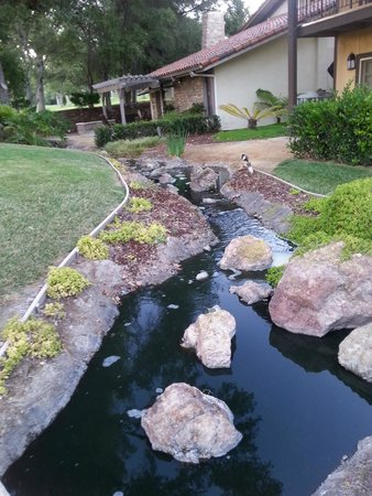 Westlake Village Inn: water features