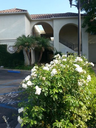 Westlake Village Inn: Our hotel