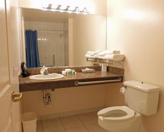 Rosedale on Robson : Bathroom