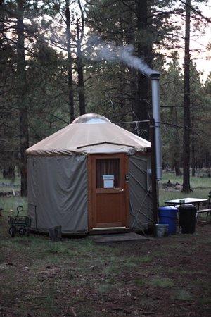 Flagstaff Nordic Center: Honeysuckle Back Country Yurt