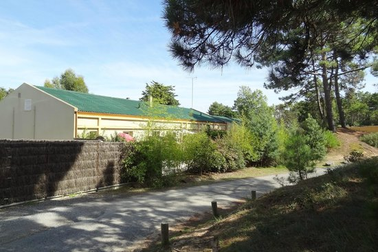 Camping Le Domaine des Pins: Villa des pins : appartements