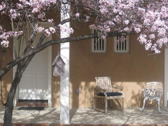 Los Poblanos Historic Inn & Organic Farm : Blossoms