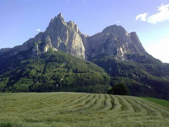 Alpenhotel Panorama: il vento che accarezza l'erba