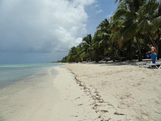 Isla Saona: View from the island
