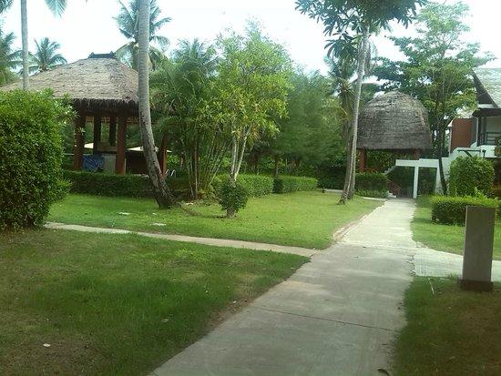 Twin Lotus Resort & Spa by Burasari: Jardín del hotel