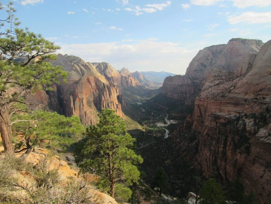 Angel's Landing: View from the Top, this is what you get for the hike