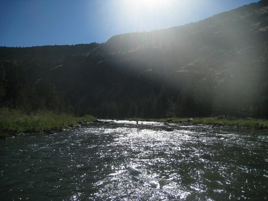 Rivers Bend Fly Fishing Guides: Me in the middle of the river, waaaay upstream.