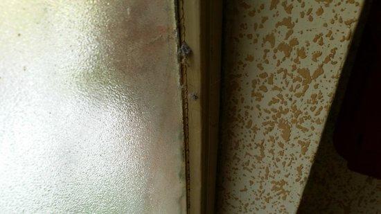 Hotel Paco: L' accuratissima pulizia delle finestre.
