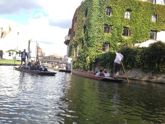Scudamore's Punting Company: Punting
