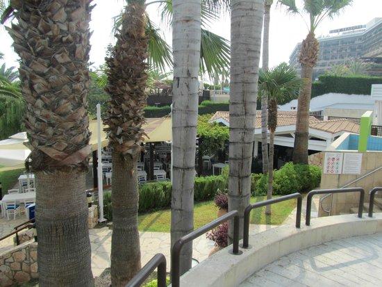 Mediterranean Beach Hotel : Jardin
