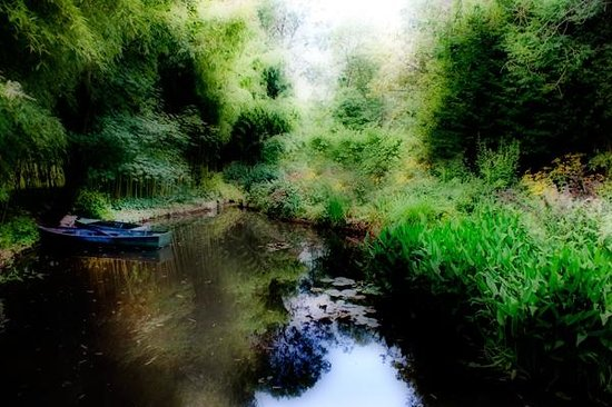 Maison et jardins de Claude Monet : Monet'Garden Lily Pond