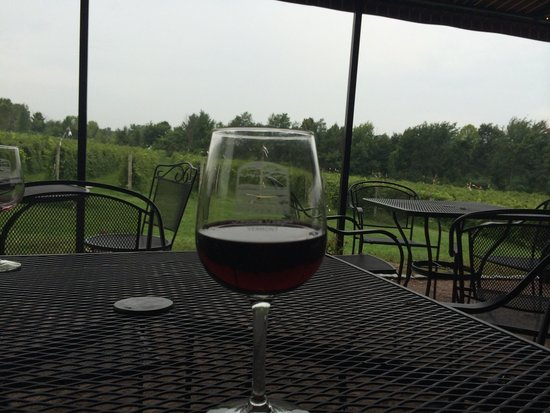 Shelburne Vineyard: Yum!!