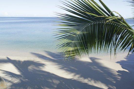 Savaii Lagoon Resort : perfect beach