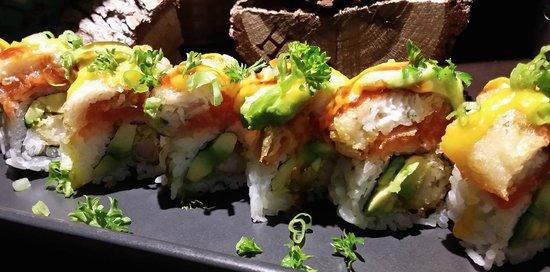 Sushi sketch Boston roll vector image