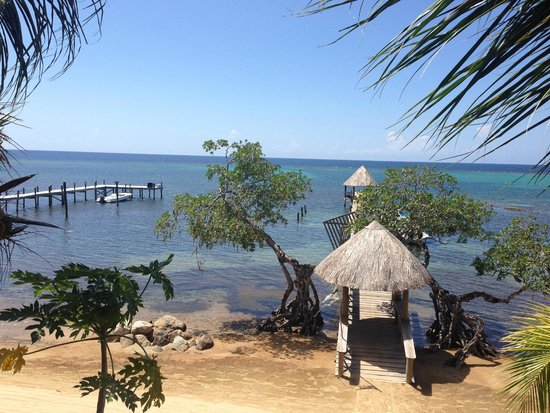 Tranquilseas Eco Lodge and Dive Center: View from the dining area