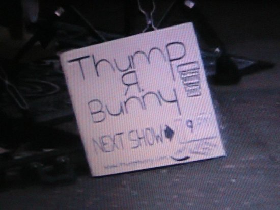 Government Street: Thump R Bunny - Street Performer