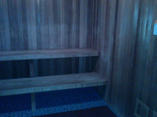 Spa Montage : Sauna