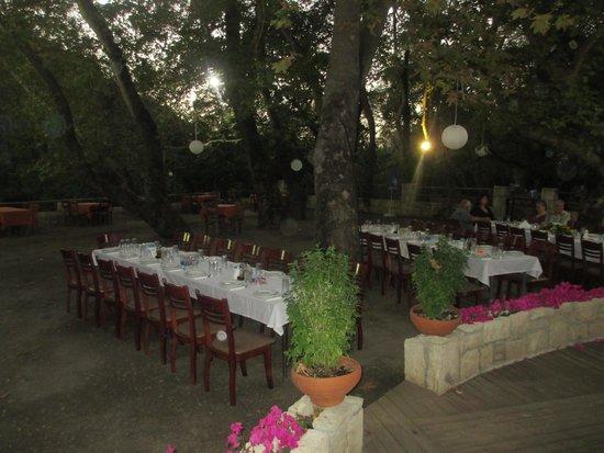Drakiana Taverna: Part of the dining area