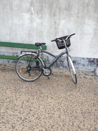 La Grainetiere Camping : Hire Bike