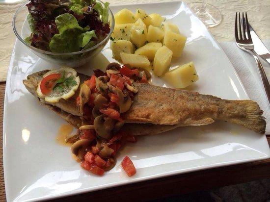 Restaurant im Seehotel Gruner Baum: Grilled trout