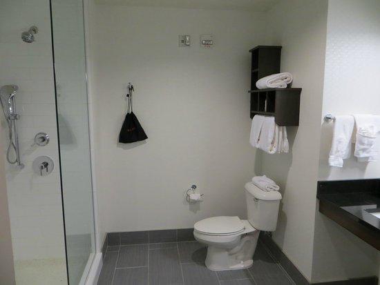 Hampton Inn & Suites Denver Downtown-Convention Center: clean, big bathroom