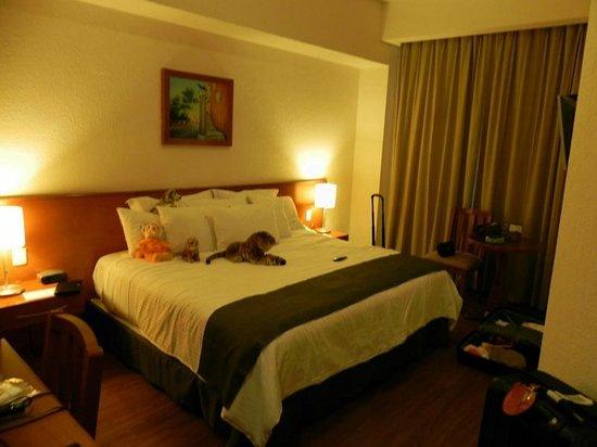 Meson Ejecutivo Hotel: Room