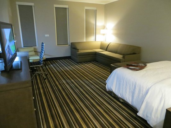 Hampton Inn & Suites Denver Downtown-Convention Center : very spacious suite
