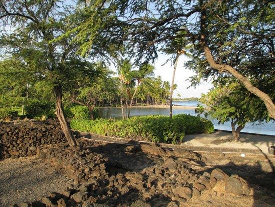 Waikoloa Beach Marriott Resort & Spa : pathway on hotel property
