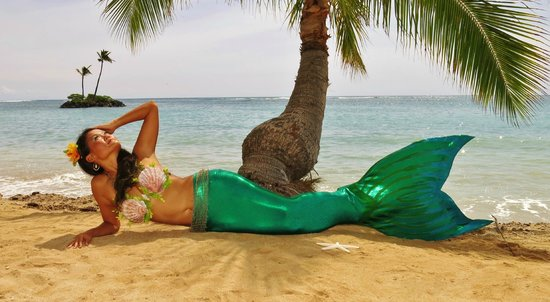 Mermaids Of Hawaii Honolulu 2018 All You Need To Know Before You Go With Photos Tripadvisor