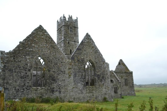 Galway Tour Company Reviews