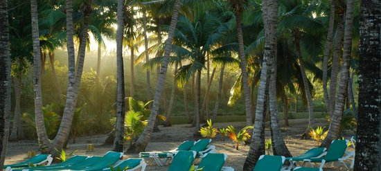 ClubHotel Riu Merengue: early in the morning