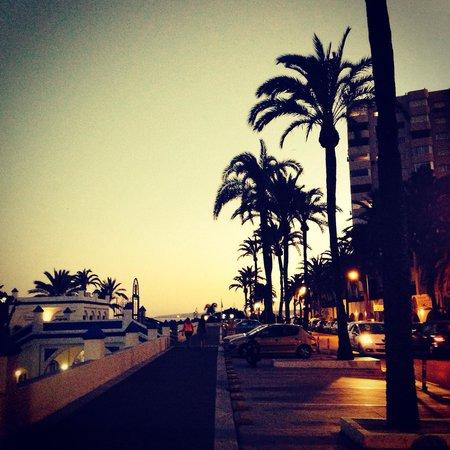 Puerto Deportivo de Estepona : Вечер