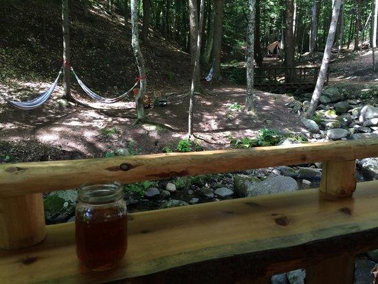 Orenda: Hammocks and the creek on camp.  You can hear it while you sleep