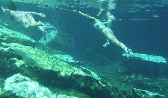Cenote Azul: Bajo el agua