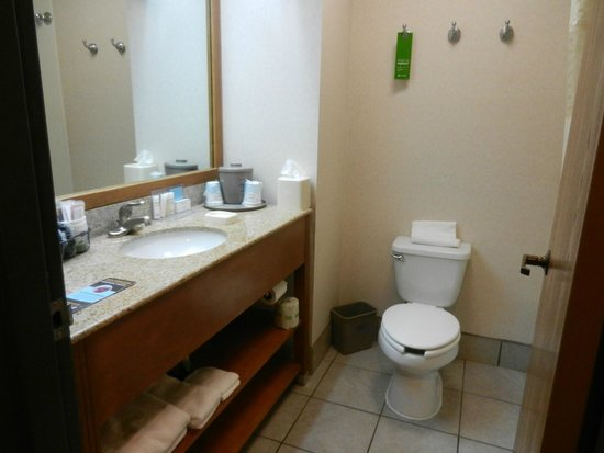 Hampton Inn Denver North / Thornton : Our Bathroom