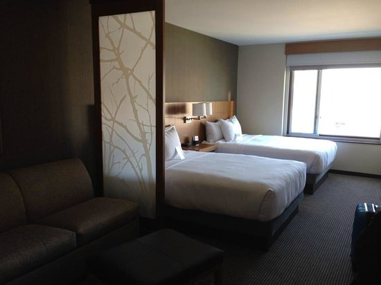 Hyatt Place Chicago-South/University Medical Center: Beds and divider in double bed room